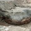 Αποκαλύφθηκε το εντυπωσιακό τείχος της Βεργίνας