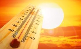 ΚΕΕΛΠΝΟ: 600 νεκροί κατά το πρώτο κύμα καύσωνα