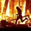 Κάηκε ζωντανός στο φεστιβάλ του Burning Man (vid)
