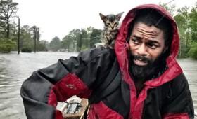 Στους 31 οι νεκροί από τον τυφώνα Φλόρενς (vid)