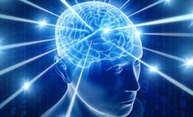 Ελληνίδα βρήκε το αποτύπωμα της συνείδησης στον εγκέφαλο (vid)