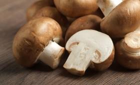 Η κατανάλωση μανιταριών μειώνει τον εκφυλισμό των εγκεφαλικών κυττάρων (vid)