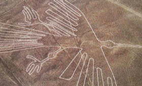 Τα πτηνά των αινιγματικών γεωγλυφικών της Νάσκα (vid)