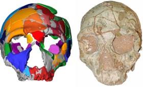 Βρέθηκε στην Ελλάδα το αρχαιότερο κρανίο Homo sapiens (vid)