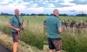 Σύγχρονος Ορφέας γοητεύει ζώα με τη μουσική του (vid)