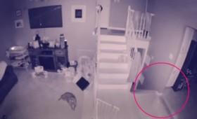 """""""Φάντασμα"""" με το """"κατοικίδιό"""" του καταγράφονται σε κάμερα ασφαλείας (vid)"""