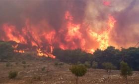 Οι φωτιές καίνε για ακόμη μια χρονιά τη Ζάκυνθο (vid)