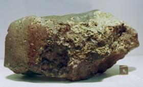 Ένας μετεωρίτης από τον Άρη, γεμάτος… ζωή! (vid)
