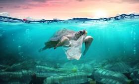 Ο πλαστικός κόσμος των θαλασσών και των ωκεανών