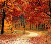 Φθινοπωρινή ισημερία 2020: Πότε είναι η πρώτη μέρα του Φθινοπώρου (vid)