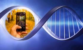 Αποθήκευσαν ψηφιακές φωτογραφίες στο DNA