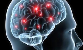 Μπορεί να ξαναζήσει ο ανθρώπινος εγκέφαλος;