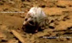 Τι συμβαίνει επιτέλους με τα κρανία στον Άρη; (Βίντεο)