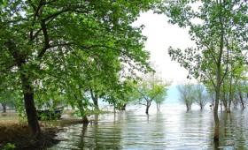 Ξεπουλάνε τα πάντα, ακόμη και τις περιοχές Natura