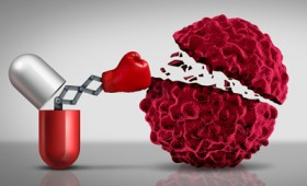 Το ανοσοποιητικό ως όπλο κατά του καρκίνου