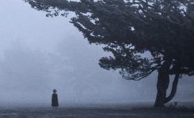 """""""Η σκιά στο σπίτι"""" book trailer του Κων/τίνου Κέλλη"""