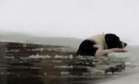 Ρώσος σώζει σκύλο από παγωμένη λίμνη (βίντεο)