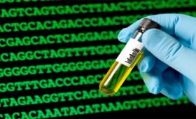 Δημιουργία νέων μορφών ζωής με συνθετικό DNA
