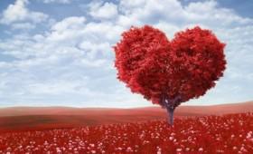 Αγάπη μέσα στο χρόνο…