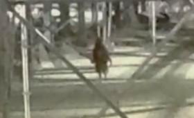Το παράξενο ανθρωποειδές του Τέξας (βίντεο)