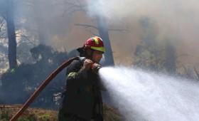 Σε ύφεση η μεγάλη πυρκαγιά στην Ανατολική Αττική