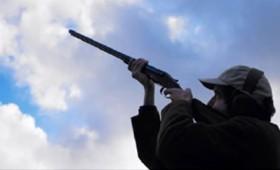 50.000 πολίτες σκοπεύουν να πυροβολήσουν την Ίρμα!