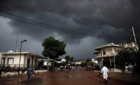 Μάνδρα Αττικής: Φταίνε ο καύσωνας και η ξηρασία