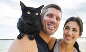 Νάθαν: ο γάτος πρωταθλητής της κολύμβησης (vid)
