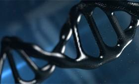 Μαύρο DNA: Εκεί όπου η φύση κρύβει τα μυστικά της ζωής