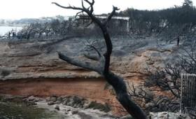 85 έως τώρα οι νεκροί από τη φονική πυρκαγιά στο Μάτι