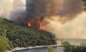 Μαίνεται η μεγάλη πυρκαγιά στη Σκόπελο (vid)