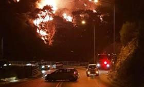 Ανεξέλεγκτη μαίνεται η πυρκαγιά στη Σάμο
