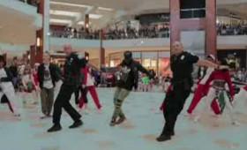 Αστυνομικοί σε flash mob στην Αβεντούρα του Μαϊάμι (vid)