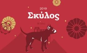 Ο Σκύλος στη χρονιά του Χοίρου (2019)