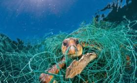 Ο εφιάλτης των πλαστικών απειλεί την Ελλάδα (vid)