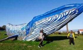 Γλυπτό φάλαινας από ανακυκλωμένο πλαστικό (vid)