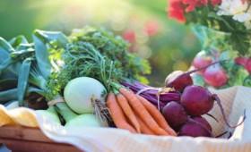 Ο ρόλος της διατροφής στη θεραπεία του καρκίνου (vid)
