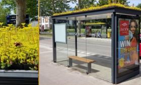 Καταφύγια μελισσών στις στάσεις λεωφορείων (vid)