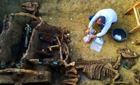 Ανακαλύφθηκε απολιθωμένο ρωμαϊκό άρμα (vid)