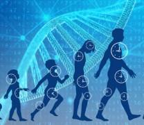 Ο άνθρωπος μπορεί να ζήσει έως και 150 χρόνια (vid)