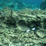 Μια υποθαλάσσια Πομπηία στις ακτές της Δήλου