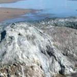Blob: Εισβολή από άγνωστο πλανήτη