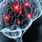 Μπορεί να ξαναζήσει ο εγκέφαλος του ανθρώπου;