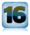 icon_sg16100