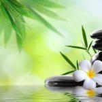 Ζεν, Αστρολογία και Άνοιξη – Προβλέψεις