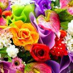 ΤΕΣΤ: Τι αποκαλύπτει το αγαπημένο σας λουλούδι