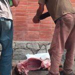Στη Βενεζουέλα σφάζουν σκυλιά για να τραφούν