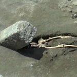 Δραματική ανακάλυψη στην Πομπηία (vid)