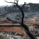 85 οι νεκροί από τη φονική πυρκαγιά στο Μάτι (vid)