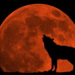 Μύθοι και θρύλοι της Ματωμένης Σελήνης (vid)